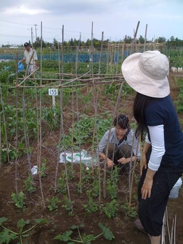 リノベーションで心豊かな北海道の暮らしを実現したい!-久保農園1