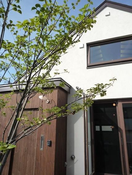 $リノベーションで北海道の豊かな暮らし-札幌リノベーション住宅、北海道の野草
