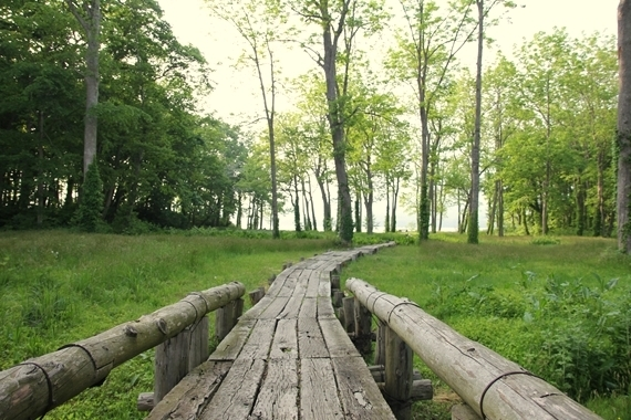リノベーションで北海道の豊かな暮らし-大沼国定公園