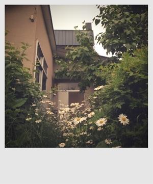 リノベーションで北海道の豊かな暮らし-白樺と薪ストーブの家プロジェクト